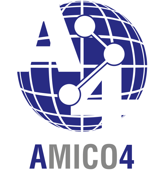 Amico 4, software gestionale ICOM